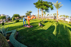 holiday-facedown-tuesday (KUxFoFo1) Tags: travel colorful redsea egypt fisheye 8mm hurghada facedown lifeisgreat samyang hfdt sonya33 albatrospalaceresortspa