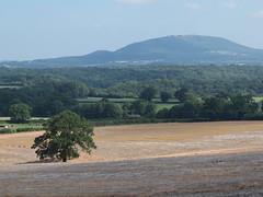 Oak & Wrekin (perrin124) Tags: sun hazy