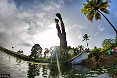Dive into happiness (Gulfu) Tags: life light sun lake tree water sport swim canon pond coconut watching diving kerala fisheye 7d flare karnataka stillwaters kulam lightflare divinginto gulfu flickrandroidapp:filter=none bestofswiming upabovethewaters