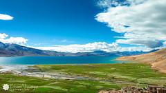 Ladakh (cishore) Tags: blue sky india lake mountains nature landscape photographer himalaya hyderabad leh cishore kishore ladakh tsomoriri hws diskit marmoth wwwkishorencom pangongso kishorenagarigari kishorephotography teamhws wwwcishorecom