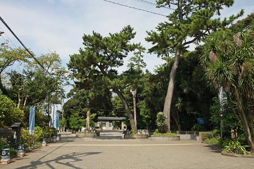 江の島(広場)(Enoshima Island, Kanagawa, Japan)