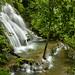 Una cascata in Palenque