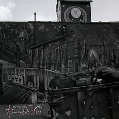 5 Pointz, New York (ASdeVera) Tags: nyc d76 hasselblad 5pointz graffitiart 500cm kodaktrix400