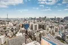 Tokyo skyline (M.Bob) Tags: blue sky urban tree japan skyline modern buildings asian concrete tokyo shinjuku asia cityscape towers international crowded density capitalcity northeastasia