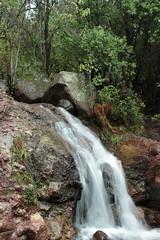 Reserva Los Cipreses (Prauten) Tags: chile naturaleza nature water waterfall agua bosque cascada