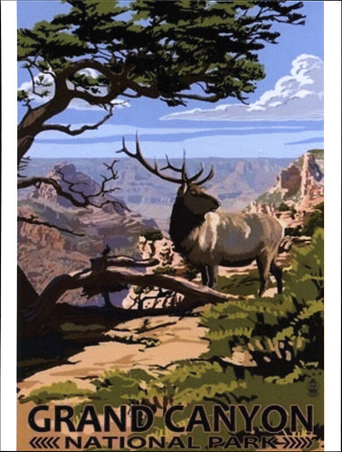 postcard - Grand Canyon National Park poster