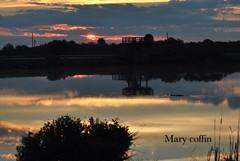 (mcoffincocoa2002) Tags: sunrise gator wetlands