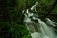 Deuxième Cascade extrème amont du ruisseau du Creux Lague - Blègny (francky25) Tags: du jura cascade franchecomté ruisseau creux lague deuxième extrème amont blégny