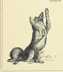 Image taken from page 177 of 'Woodland Romances; or, Fables and Fancies'