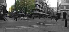 Trees (Antonio Vieira de Mello) Tags: tree london nikon londres nikkor árvore 70200 árvores d800