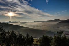 Morgensonne - HDR (bohnengarten) Tags: italien italy eos la san italia via pisa toscana farfalla toskana morgensonne miniato oliven provinz francigena 70d