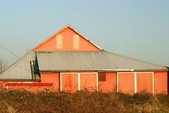 Potato Farm Building_5599 (Mike Head - Jetw