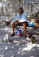 Pet Guardian (Kombizz) Tags: sea bench candid kos greece cos mediterraneansea wildcats petfood dodecanese aegeansea 1297 sittingcats kombizz κωσ oldgreekman petguardian felixmeatysensations