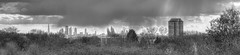 From Walthamstow to the City (ArtGordon1) Tags: uk england blackandwhite london blackwhite e17 shard tower42 walthamstow thegherkin cityoflondon walthamforest davegordon thesquaremile davidgordon theshard artgordon1 daveartgordon daveagordon davidagordon stdavidcourt