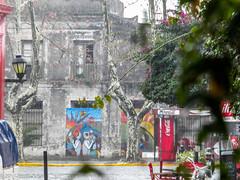 DSCN6768 (Randy Kasal) Tags: del uruguay randy colonia sacramento kasal
