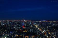 Night Sky (Ayrcan) Tags: city urban tower japan skyline island tokyo asia skyscrapers capital aerial hills metropolis roppongi mori honshu