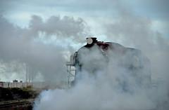 RHDR No.9 Winston Churchill (richwat2011) Tags: kent seaside nikon railway steam dungeness locomotive d200 southcoast brightred narrowgauge rhdr 18200mmvr greenly romneyhythedymchurchrailway dungenessstation balloonloop daveypaxman no9winstonchurchill alsrichardson
