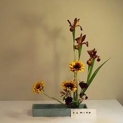 Fumiko's #ikebana