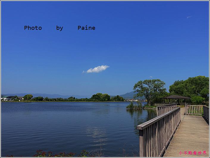 和歌山大池遊園-平池綠地公園 (39).JPG
