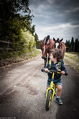Chased (marinasyben) Tags: horses bicycle countryside toddler runningaway