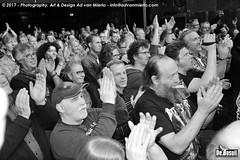 2017 Bosuil-Het publiek bij Purpendicular 9-ZW