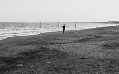 L'eterno ritorno (Ro_.) Tags: bn spiaggia uomo mare bottiglia