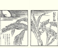 Japanese banana (Japanese Flower and Bird Art) Tags: flower banana musa basjoo musaceae ippo hanabusa woodblock picture book japan japanese art readercollection