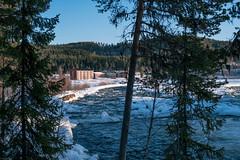 Warm hotel in the coldness (knipslog.de) Tags: arcticfalls arjeplog schnee schweden storforsen waterfall panorama polarlights snow winter ice reindeer caribou