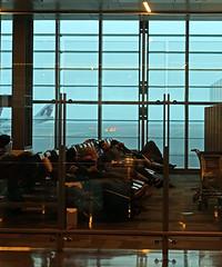 Doha Airport 22 (David OMalley) Tags: qatar doha airport hamad international