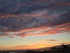 Santa Monica Beach Sunset California USA (M&M_Photography) Tags: santamonica beach sunset redsky red baywatch pier santamonicapier sunsetlovers puestadesol sol picture beautiful photo followme venice