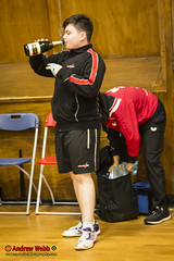 _MG_0054 (Sprocket Photography) Tags: tabletennisengland tte tabletennis seniorbritishleaguechampionship batts harlow essex urban nottinghamsycamore londonacademy drumchapelglasgow kingfisher wymondham cippenham uk normanboothrecreationcentre etta
