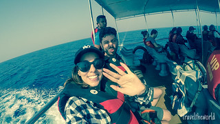 Barco ballenas