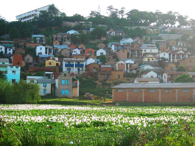 Madagascar2010 - 17