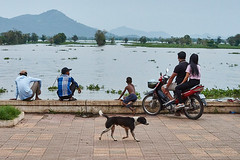 People looking at the lake, Kompong Chhnang, Cambodia (Alex_Saurel) Tags: dog group culture orientation asia horizontal photoreport lifescene tonlésap day reportage scènedevie travel fille people working lake photospecs qualite children position animal lac imagetype girl fullframe cambodge couple nature lifestyles photojournalism chien motorbike scans stockcategories pleinformat kid type time photoreportage transportation sony50mmf14sal50f14
