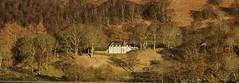 House on the hill, Glen Lyon (mellon93) Tags: glenlyon glen scotland trees sundown
