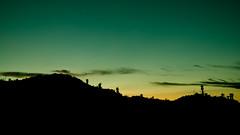 Spring Sunset I (Iván Calderón) Tags: landscape desert elpasopanoramics flowersplants mountains outdoor elpaso sunset wildlife texas unitedstates us