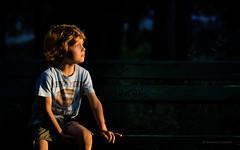 Last ray of sunlight (Dominic Cristofor) Tags: boy portrait kid nikon child candid noflash nikkor v1 eduard 105mmf28gvrmicro 285mm