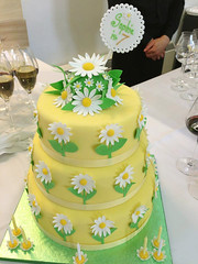 Sophie's birthday cake (adrianarosati) Tags: birthday party yellow cake spring daisy tiers adrianarosati