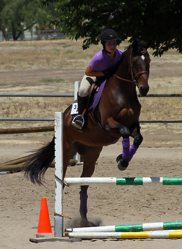 Horse Show - Thousand Oaks, California, May 19, 2013