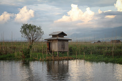 Inle Lake - Burma (trickyd3) Tags: lake golden burma land myanmar inlelake inle the