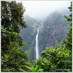 Deuxime chute du Carbet (gwadazindien) Tags: nature eau national parc chute fort guadeloupe