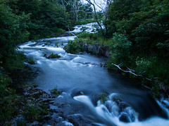 River at Night (Tk_White) Tags: trees mill water newfoundland river landscape evening slow olympus shutter rennies 1442mm epm2