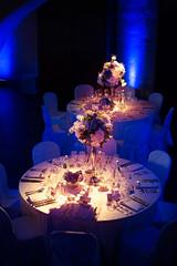 Illuminazione tavoli matrimonio (GBAudio Service) Tags: wedding spot led cena matrimonio illuminazione gbaudio
