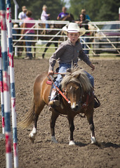 Kids' Rodeo (Sam Stukel) Tags: cowboy pony rodeo horseback littlecowboy kidsrodeo