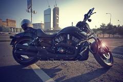 Harley Davidson - VRSCDX Night Rod Special (Khuroshvili Ilya) Tags: urban black streets bike canon chopper moscow legendary harley motorbike harleydavidson moto davidson cruiser matte moscowcity nvbr vrscdxnightrodspecial nvbr11