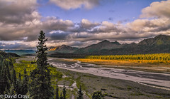 A View from Denali National Park (buffdawgus) Tags: morning summer alaska clouds forest landscape earlymorning denalinationalpark canon7d canon1585mmusmis lightroom5 topazsw