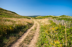 Rural Setting Off The Beach In Woolacmbe (Hughie O'Connor) Tags: england rural dunes rustic route pathway woolacombe westcountry northdevon
