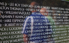 Maya Lin, Vietnam Veterans Memorial, names and reflection