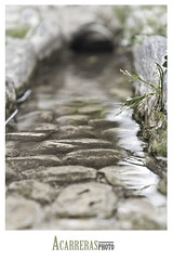 (Antonio Exposito) Tags: españa agua sony andalucia alhambra alpha alcazaba a77 piedra aguagotasonyalpha