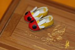 CCC's Hotaru (firefly) Shoes (chartar_69) Tags: limitededition fidelina charlesstephan charlescreaturecabinet linmurasakidesign lindastephan fideliafireflyfaerie jpopdollswigs cccfireflyfaeries jpopdollsnet greenfae